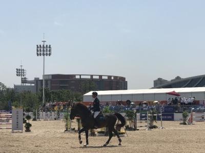 武汉军运会马术场地障碍赛开赛,100多名骑手展开马背上的较量